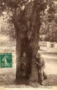 ARBRE(FORGES LES BAINS) - Trees