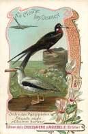 191217B CHROMO CHOCOLAT AIGUEBELLE Drôme - Monde Des Oiseaux - Ordre Palmipèdes - Frégate Aigle Albatros Hurleur - Aiguebelle