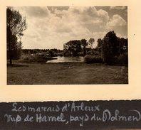 3 Photos Originales Nord - Hamel (59151) Marais D'Arleux Vus De Hamel, Pays Du Dolmen En Juin 1953 à 12h30 - Luoghi