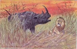 CPA Animaux Sauvages Rhinocéros Faisant Fuir Un Lion Nashorn Rinoceronte Hocopor Leon Löwe Illustrateur - Rhinocéros