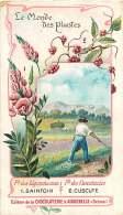 191217C CHROMO CHOCOLAT AIGUEBELLE Drôme  Monde Des Plantes Légumineuses Cuscutacées Sainfoin Cuscute - Aiguebelle