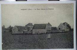 SALENCY - Le Vieux Château De Dominois. - Frankreich