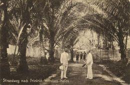 German New Guinea, MADANG, Friedrich-Wilhelmshafen, Beach Road (1910s) Palm Tree Postcard - Papua-Neuguinea