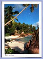 Carte Moderne Grande Taille - 11,5x15,5cm - Seychelles (Photo Jurien) - Anse Patate - La Digue - Seychelles