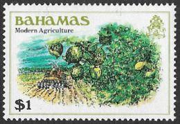 Bahamas SG569 1980 Definitive $1 Unmounted Mint [35/29972/2D] - Bahamas (1973-...)