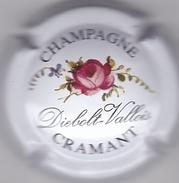 DIEBOLT-VALLOIS N°3 - Champagne