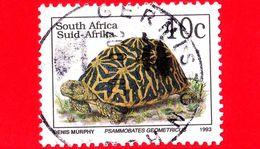 SUD AFRICA - Usato - 1993 - Tartaruga - Tortue - Turtle - Psammobates Geometricus  - 10 - Sud Africa (1961-...)