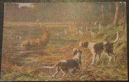 CPA - Scène De Chasse (chiens Et Cerf) - Illustration Par Fernand Maissen - Carte Couleur Non-circulée - Peintures & Tableaux