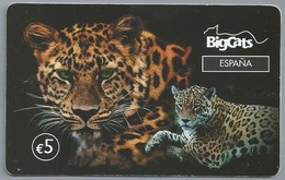 ES.- INTERNATIONAL PHONECARD - BigCats. Espana.  5 Euro -  2 Scans. - Spanje