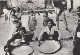 Népal - Kathmandou - Scènes Et Types - Village Tamisage Du Riz - Editeur Robillard Paris N° 22 - Nepal