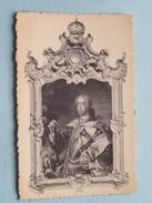 Kasteel / Château Des Vieux-Joncs ALDE-BIESEN Rijckhoven-bij-Bilsen ( Portrait ) Anno 19?? ( Zie Foto Details ) ! - Bilzen
