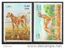 Algerie - 1983 Dogs/Greyhound-Chiens/Lévrier-Hunde/Windhund-Cani/Levriero (Sloughi)  ** - Algerije (1962-...)