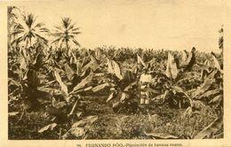 GUINEE(FERNANDO POO) BANANE - Guinée Equatoriale
