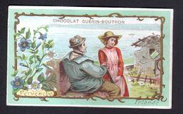 Chocolat Guerin Boutron, ..., IRLANDE, PERVENCHE - Guerin Boutron