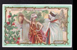 Chocolat Guerin Boutron, ..., ALGERIE, CACTUS - Guerin Boutron