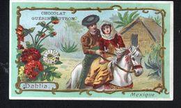 Chocolat Guerin Boutron, ..., MEXIQUE, DAHLIA - Guérin-Boutron