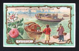 Chocolat Guerin Boutron, ..., COREE, CAMELIA - Guerin Boutron