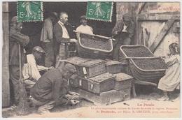 Domaine De Domois Par Dijon - La Cueillette Du Cassis En Bourgogne - La Pesée - Dijon