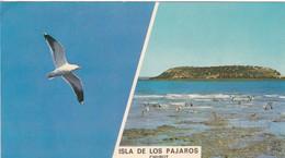 ISLA DE LOS PAJAROS FRENTE A LA PENINSULA VALDES, PUERTO MADRYN, CHUBUT.  ED LIZ COLOR. ARGENTINE -BLEUP - Argentine