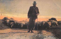 Berger - Shepherd - Ed. London Londres - 1905 - Elevage