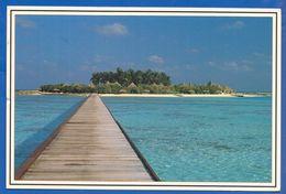 Maldiven; Palm Tree Island Veliganduhuraa - Maldiven