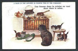 +++ CPA - Carte Fantaisie - Chat Humanisé - Cat - Katze - Humour - Comique Serie  3876 -- 1922   // - Chats