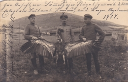 Carte Photo Foto Karte Militaria 1917 Magdeburg - Magdeburg