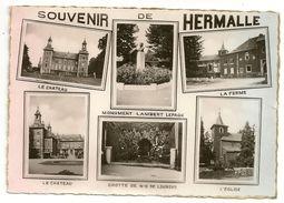Souvenir De HERMALLE (Engis)   Multivue: Le Château; Monument Lambert Lepage; La Ferme; Grotte N-D De Lourdes; L'Eglise. - Engis