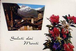Saluti Da Monti - 213 - Formato  Grande Viaggiata – E 3 - Unclassified