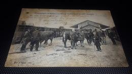 Roumazieres  Embarquement De Bestiaux  à La GARE De Roumazieres - France