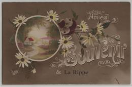Amical Souvenir De La Rippe - VD Vaud