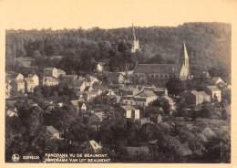 CPM - ESNEUX - Panorama Vu De BEAUMONT. - Esneux
