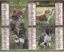 CALENDRIER ALMANACH CARTIER BRESSON 59 NORD 2012 - CHATS MAINE COON, CHIENS BRAQUES DE WEIMAR, COKER SPANIEL, YORSHIRE.. - Calendars