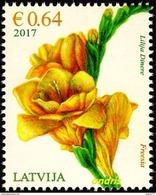 Latvia Lettland Lettonie 2017 (03) Flower - Freesia - Blume - Freesie - Lettland