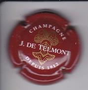 PLACA DE CHAMPAGNE J. DE TELMONT (CAPSULE) - Sin Clasificación