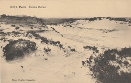 Putte , Putsche Duinen ,(F.Hoelen ,Cappellen , 10024 ) - Putte