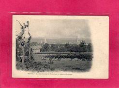 35 Ille Et Vilaine, Bécherel, Vue Des Rochers St-Pern, Tour St-Joseph Et Plouasne, (A. Breger) - Bécherel