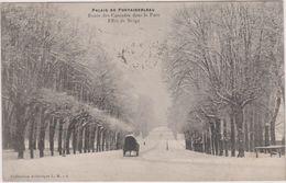 77 Fontainebleau Route Des Cascades  Dans Le Parc  Effets De Neige - Fontainebleau