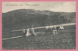 67 - BAD NIEDERBRONN - NIEDERBRONN Les BAINS - Partie Langenacker - Labour - Laboureur - Charrue - Boeufs - Niederbronn Les Bains