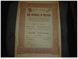 """Part Sociale""""Soie Artificielle De Myszkow""""(Pologne,Poland) Renaix 1929 Avec Tous Les Coupons. - Textile"""