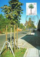 26747. Tarjeta Maxima BONN (Alemania Federal) 1988. Servicios Desarrollo, Arbol, Baum - [7] República Federal