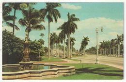 Looking East On Beautiful Royal Poinciana Way, Palm Beach, Florida - Palm Beach