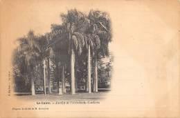 LE CAIRE  JARDIN DE L'EZBEKIEH COUKERS  CLICHE DITRICH - Le Caire