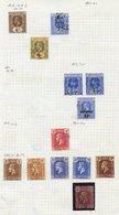 CAYMAN ISLANDS & DOMINICA Good To FU Ranges On Leaves. Caymans 1900 ½d, 1d, 1905 ½d (2), 1d (2), 2½d (2), 1907 1s, 1921- - Unclassified