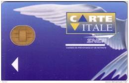FRANCE CARTE A PUCE CHIP CARD DEMO BULL CARTE VITALE SNCF NEUVE MINT - Trains