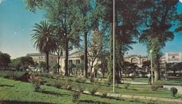 TUCUMAN. PLAZA Y CATEDRAL. EDICOLOR, MACCHI. PANORAMA -ARGENTINE-BLEUP - Argentina
