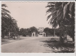 CPSM Grand Format - LA CIOTAT - Le Chateau Lumière - Voiture Ancienne Vieille Automobile - La Ciotat