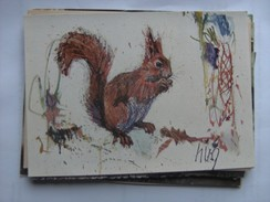 Eekhoorn Squirrel Eichhörnchen Ecureuil Edition Papyria - Animaux & Faune