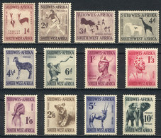 SOUTH-WEST AFRICA: Sc.249/260, 1954 Animals, Complete Set Of 12 Values, VF Quality. - Stamps