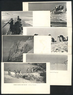 ANTARCTICA: French Antarctic Expedition 1903-1905 Led By Charcot: 6 PCs With Varied - France
